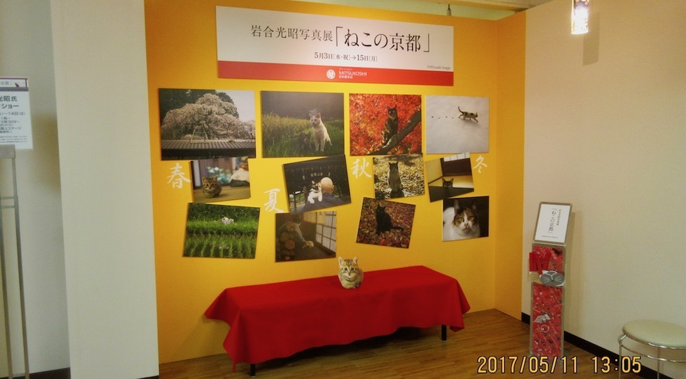 20170511-2.jpg